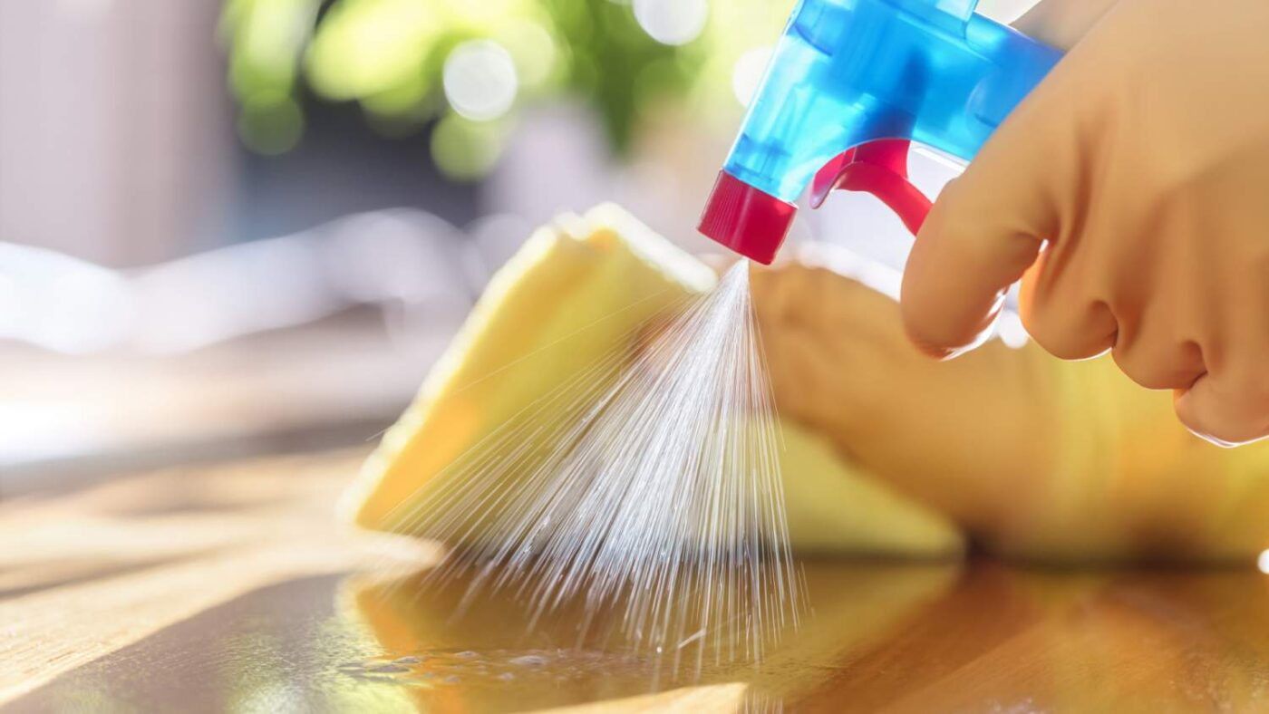 GoGoNano antiviraalne puhastus-ja desinfitseerimisvahend